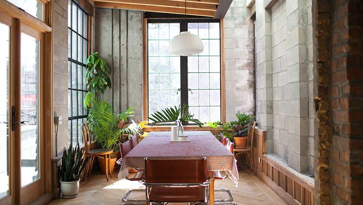 Plant Interior Design Captivating 2018