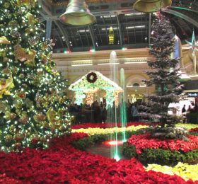 5+Reasons+to+Visit+Las+Vegas+for+the+Holidays