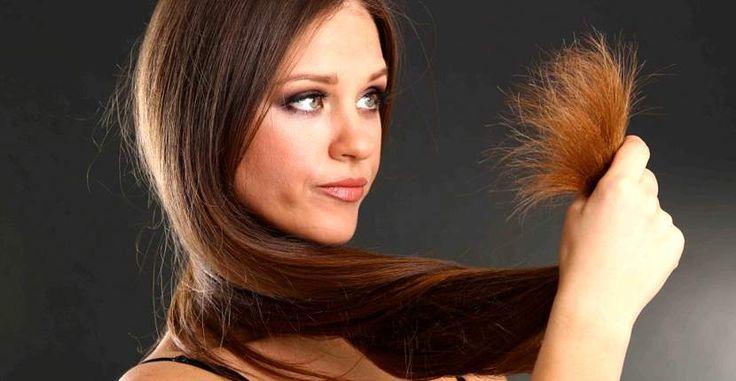 selain ketombe, rambut bercabang adalah masalah yang sering dihadapi, untuk mengatasi rambut bercabang kamu bisa menggunakan 18 cara alami ini.
