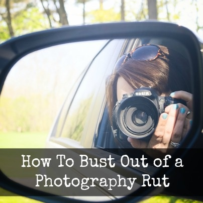 13 best photo books i would like to buy images on pinterest photo create beautiful photo books cards calendars and more with picaboo fandeluxe Images