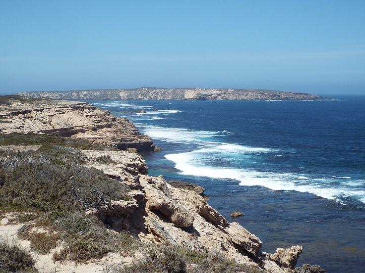 Die Strecke Perth Adelaide zählt zu einer der weltbesten Straßenrouten, doch es ist die Tierwelt, die sie zu einem einzigartigen Erlebnis macht. Sie können mit Seehunden und Delfinen schwimmen (optional), Australiens größten Vogel, den Keilschwanzadler, in der Luft bewundern und zwischen Juni und Oktober Wale beobachten. Die Übernachtungsplätze sind einzigartig und Ihre erfahrenen Reiseleiter liefern Ihnen viel Hintergrundwissen - wahrhaftig ein Abenteuer zu wilden Plätzen.