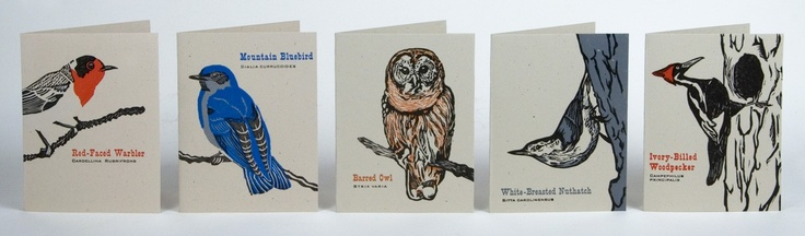 FEATHERED FRIENDS Pack of 8 Different Bird Cards Hand Printed Letterpress