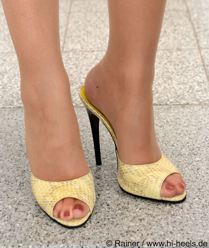 Pin on Mules