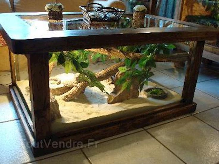 Table basse terrarium rustique pour reptiles 1