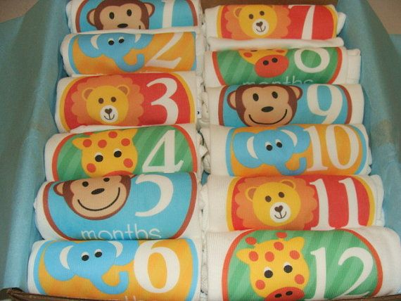 $96.99 Set of 12 Month 2 Month Milestone Unisex by Month2MonthBabyco
