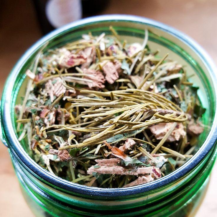 douglas fir forest friend tea