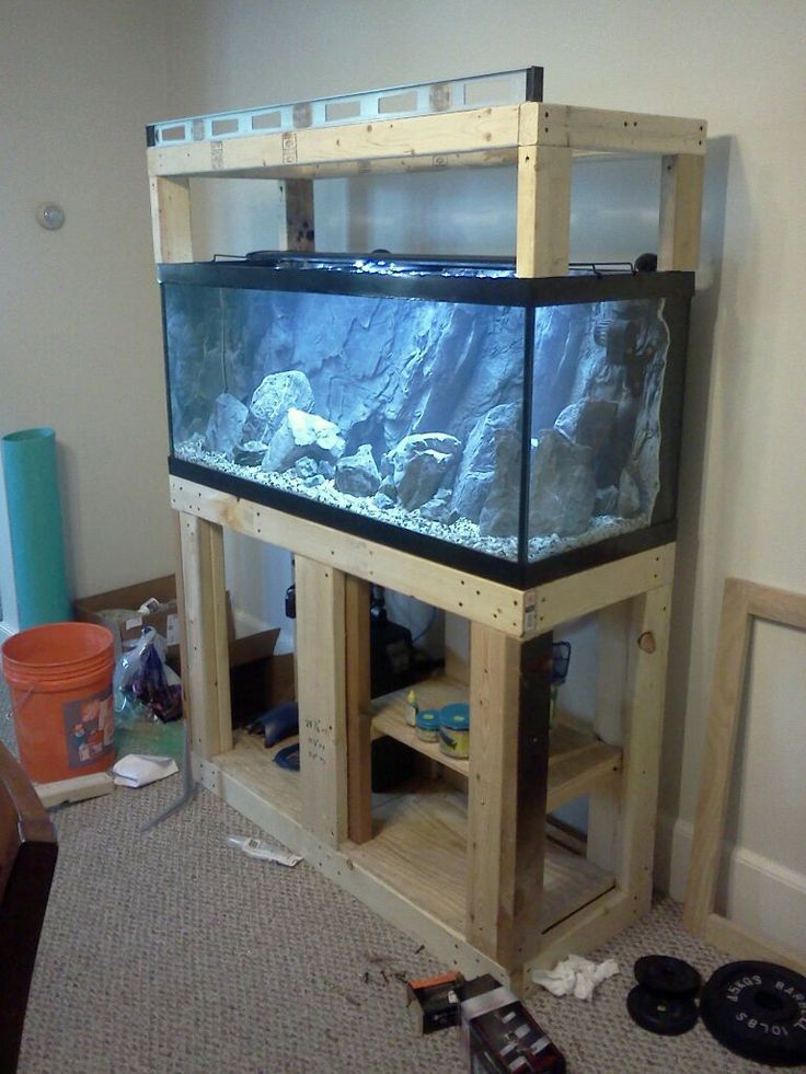 Building aquarium stand 75 gallon beared dragon for Custom fish tank stand