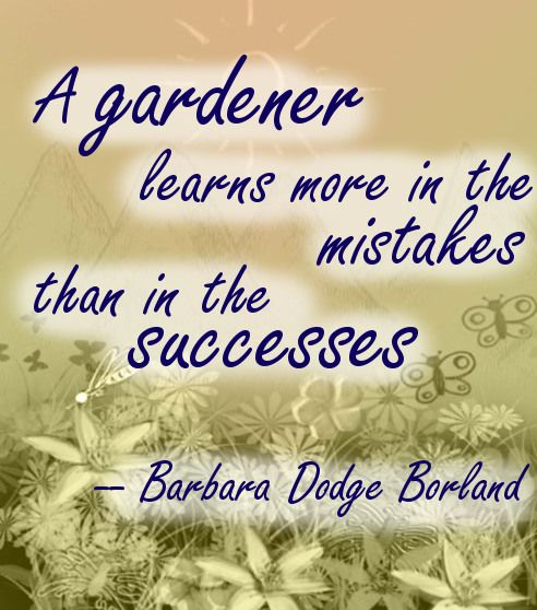 A gardener learns more in the mistakes beautiful garden quote by Barbara Dodge Borland