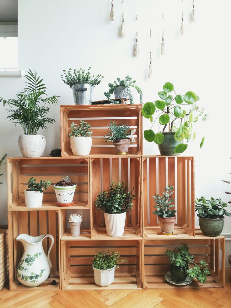Crates as plant stands. Succulents and other indoor plants.