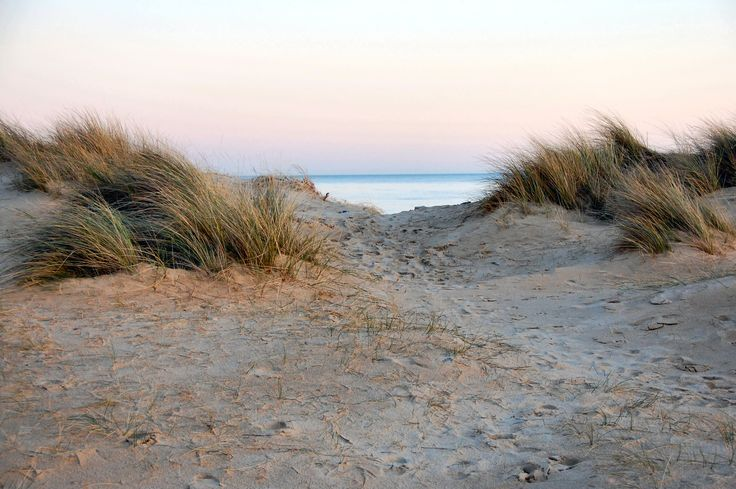 Beach   Strand   Zeeland   Dunes   Sea   Noordzee   www.ruiterplaat.nl