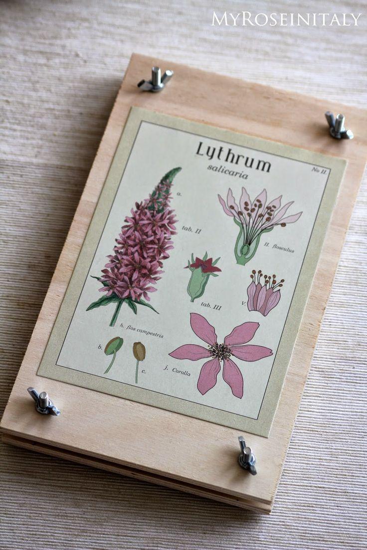 Come realizzare una pressa per fiori e piante.