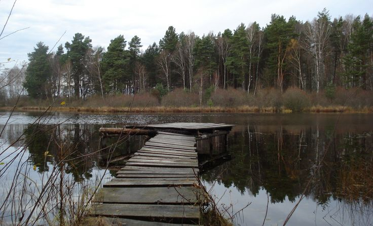 Okolice Nakielna- kładka na jeziorze w lesie.