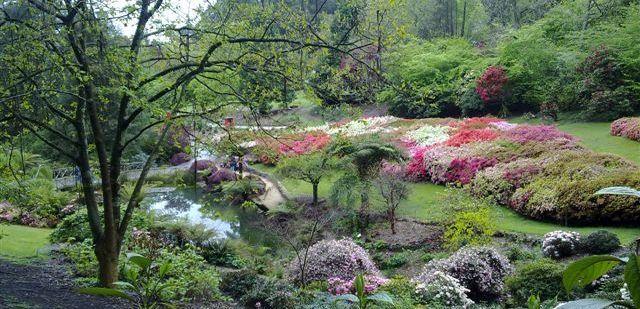 mistaolinda garden.jpg (640×309)