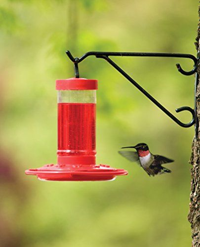 First Nature 3051 Hummingbird Feeder, 16-Ounce   First Nature 3051 Hummingbird Feeder, 16-Ounce First Nature 16-Ounce Hummingbird Feeder. The bright red color attracts the most inquisitive hummingbirds. With easy-to-fill wide-mouth jar reservoirs and two-part bases, First Nature Humming bird Feeders are the easiest feeder on the market to fill and clean. The feeding ports will accommodate several hummer's at a time. With First Nature Hummingbird Nectar Concentrate, you can mix the co..