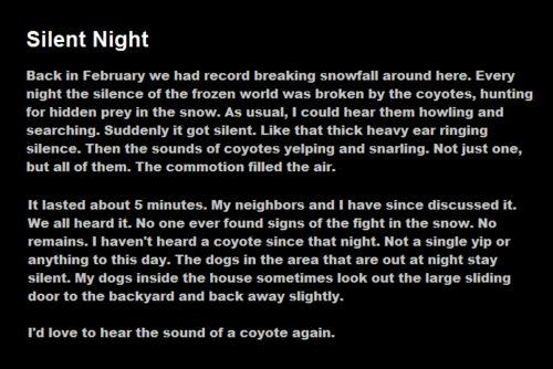 Creepypasta writing | Image - Tumblr m06dqosGiX1qbnux8o1 500.png - Creepypasta Wiki