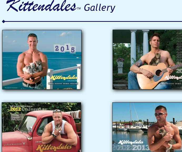 Screen Shot 2014-10-15 at 21.43.22 Kitten Dale calendar for 2015.  All funds go to caring for kittens.