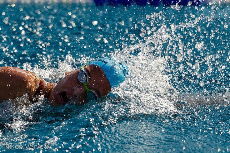 Makedonian Swimming Race 2014