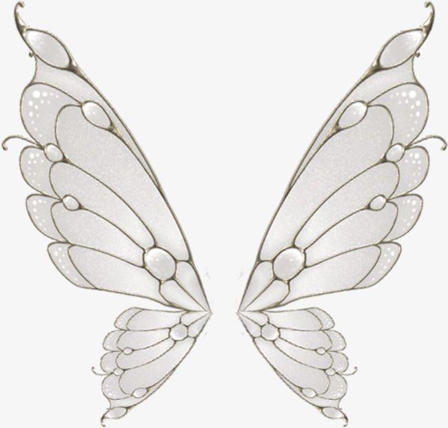 Painted White Butterfly Wings Fairy Wings Drawing Wings Drawing Wings Art