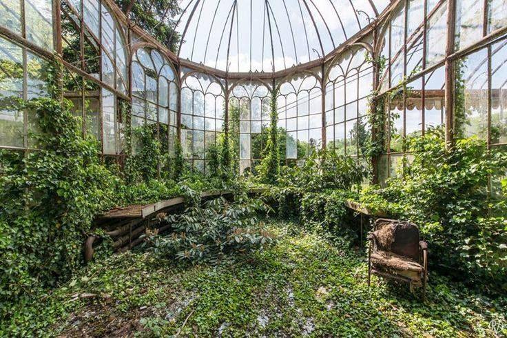 Enchanting abandoned greenhouse                                                                                                                                                                                 More