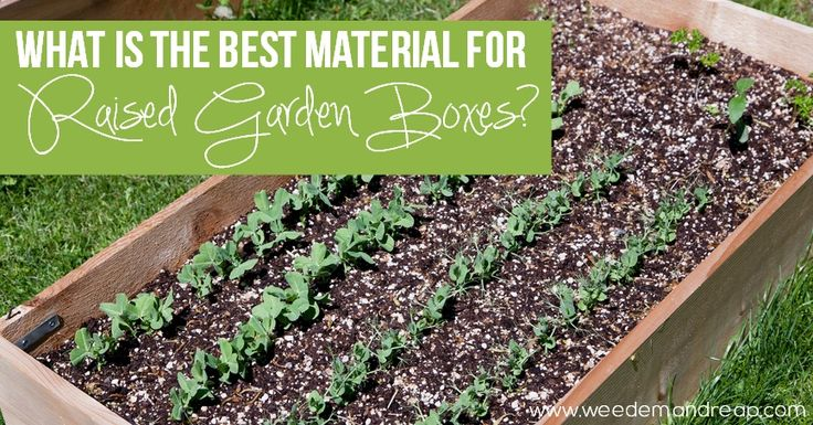 The best material for raised garden boxes gardens raised beds and planters for Best material for raised garden beds