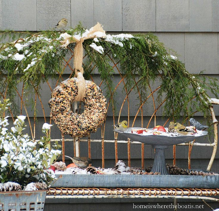 Winter Buffet for the birds and DIY Bird Seed Wreath | homeiswheretheboatis.net