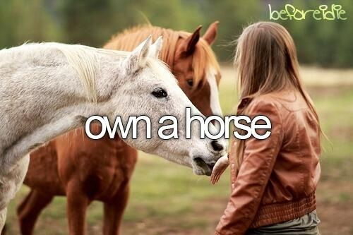Before I Die, I Want To.....