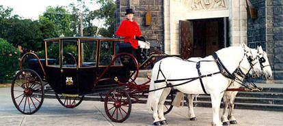 Melbourne CBD Horse and Carriage Rides | Experience Oz