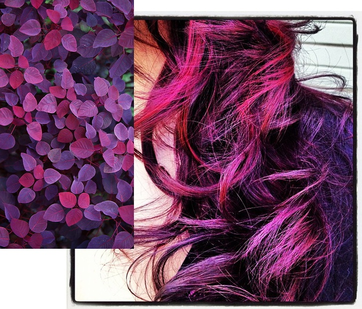 Purple and pink leaves can inspire some great hair color! Formula: Laura, from ERA. A Salon and Spa used Kenra Color red/violet with 6RR peekaboos. | Kenra Professional. Styling Inspiration.