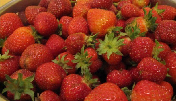 Looking for something fun to do to celebrate Spring? Strawberry picking is great fun for the whole family, especially the little ones.