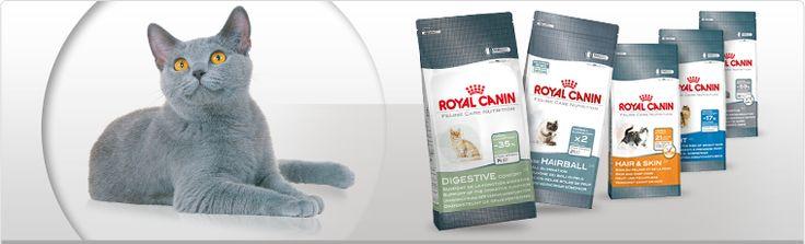 Royal Canin Katzenfutter Gratisprobe