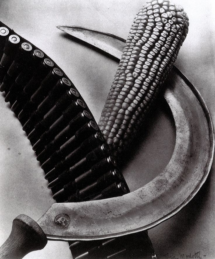 bandolier | corn | sickle 1927 || Tina Modotti, photog.