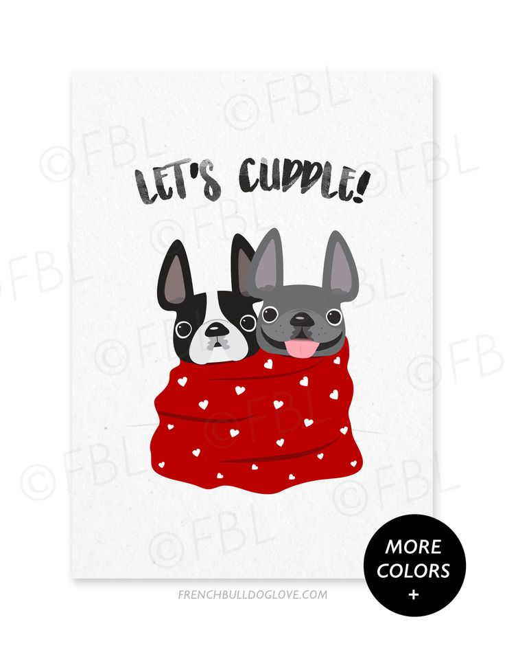 Let's Cuddle French Bulldog Valentine's Day Card - French Bulldog Love - 1
