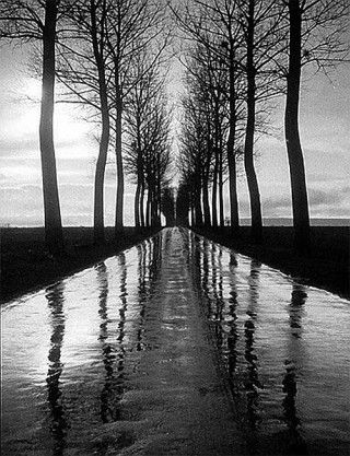 processional tree-lined route ... Learn more at http://www.postliving.co.uk/black-ideas/