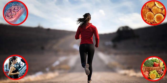Ecco come accelerare il metabolismo, senza trucchi o inganni. Scopriamo le basi fisiologiche e biochimiche che ci permettono di far ripartire il metabolismo