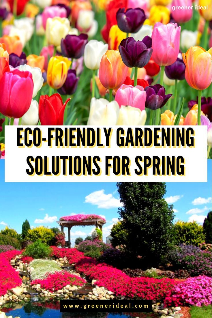 Eco Friendly Gardening Solutions For Spring In 2020 Eco Friendly