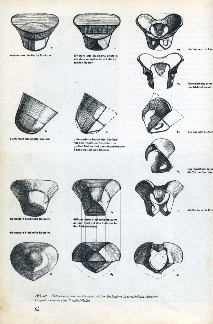 107 besten Anatomy I Bilder auf Pinterest   Anatomie ...