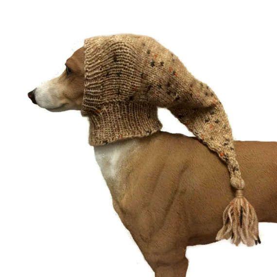 185 best Jack Bentley Dogwear images on Pinterest ...