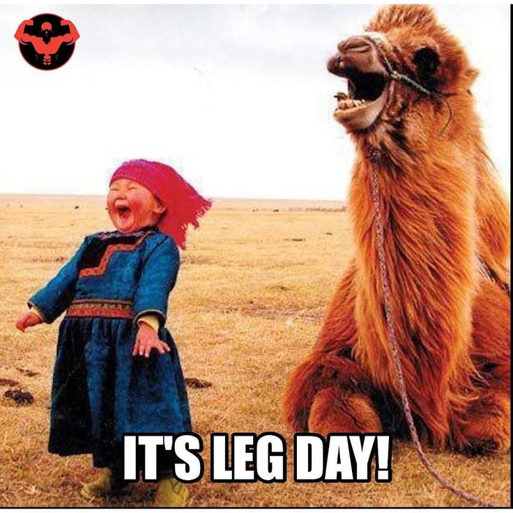 It's not leg day quite yet,but this has me excited lol