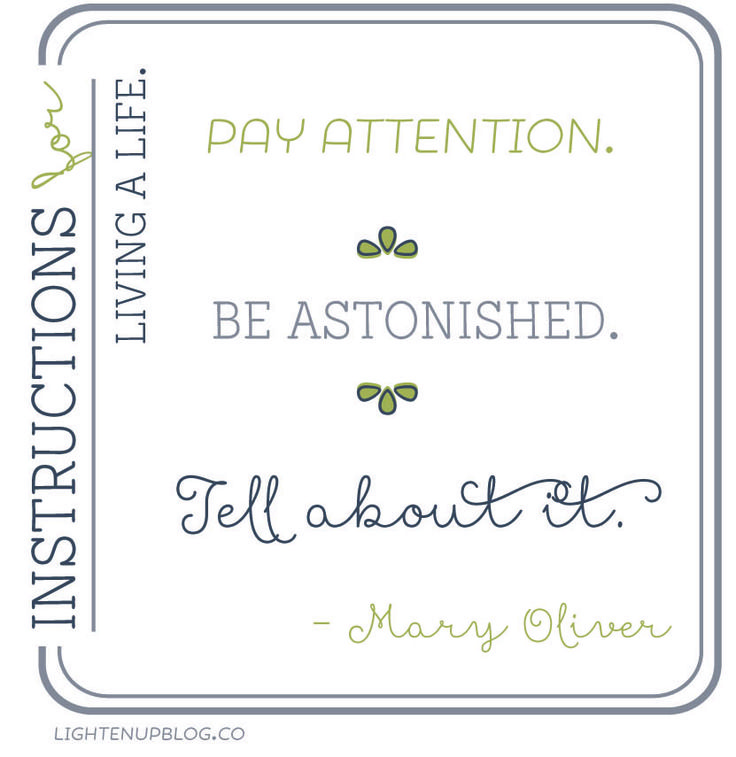Instructions for Living a life. Pay attention. Be astonished. Tell About it.  visit lightenupblog.co