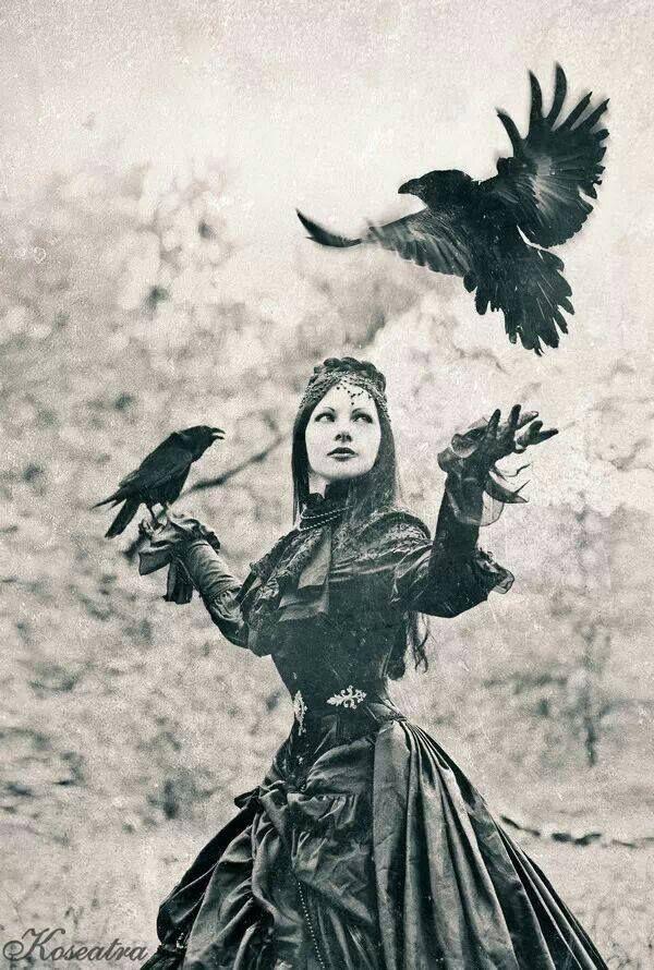 .Raven queen