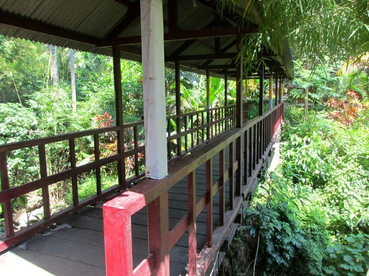 Petit article retraçant la découverte du nord de #Bali: #Lovina, les hot spring Air Panas et la cascade de Git Git. http://bit.ly/1hVG1Mw