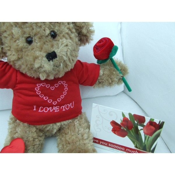 "Cuddly 16"" 'I Love You' Teddy Bear Package 2"