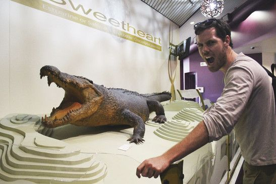 Visit The Museum and Art Gallery of the Northern Territory (MAGNT) in DArwin. It's not only home to the infamous Croc Sweetheart, but you can learn about Cyclone Tracey and the amazing Aboriginal art and culture of the Northern Territory. Best of all it's FREE fro everyone!