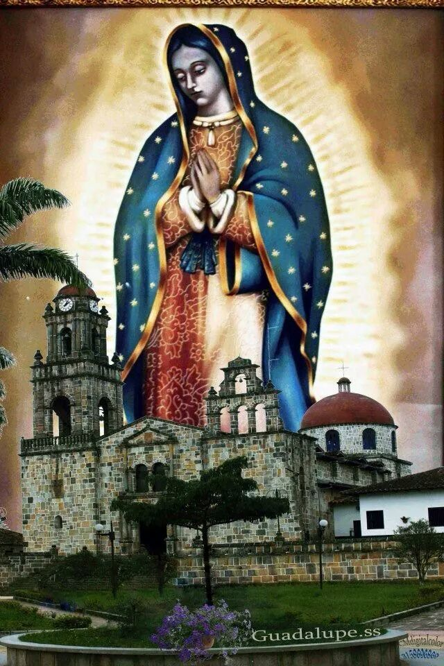 "#GpeEnFotos RT: ""@jenifer0962: Virgen de guadalupe. Santander """