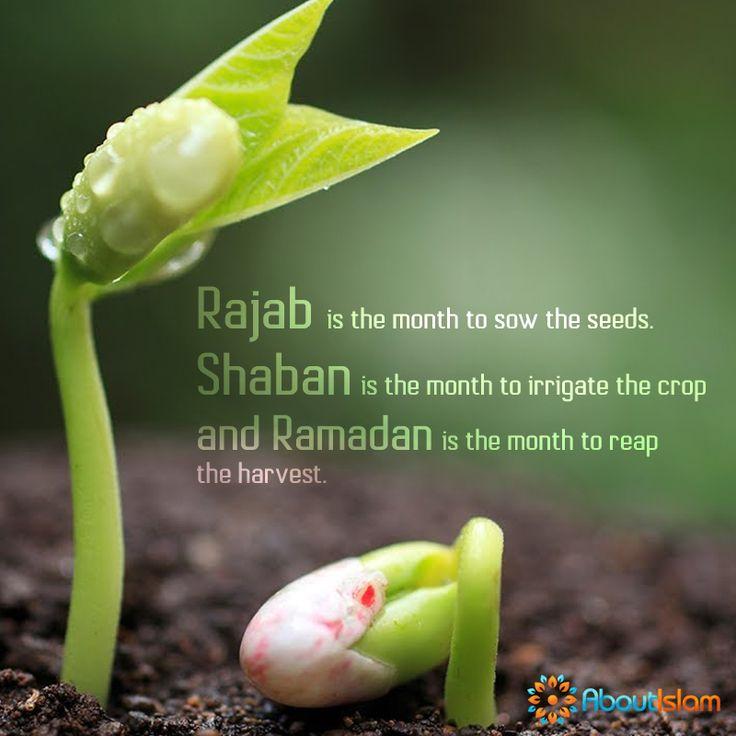 Rajab = sow the seeds. Shaban = irrigate the crop. Ramadan = reap the harvest!