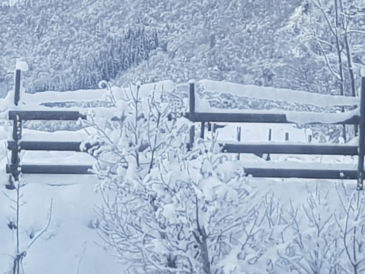 Winter wonderland,Norway