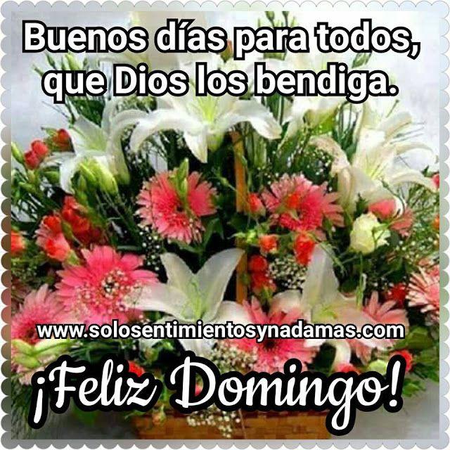 Buenos Dias Para Todos Que Dios Los Bendiga Feliz Domingo