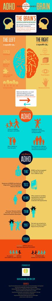 #ADHD and the hemispheres of the #brain. #neuroscience #corpuscallosum #lateralization #hemispere #infographic #science #Psychology #speech #language #perception #attention #inattention #hyperactivity #gender #disorder #dyslexia