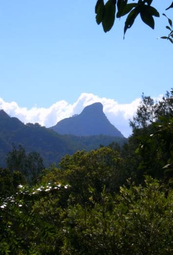 The tip of Mount Warning