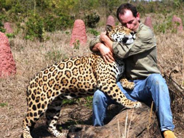 Best Animal Planet Images On Pinterest Bays Bowls And Joy Of Life - 25 heartwarming moments animals hugging